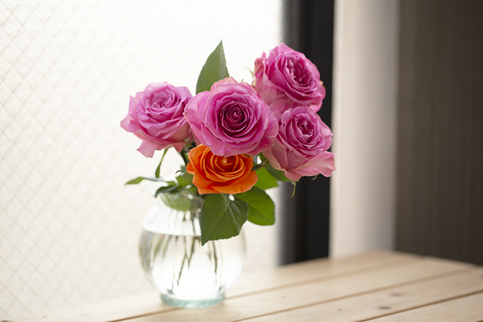 _2539_rose.jpg