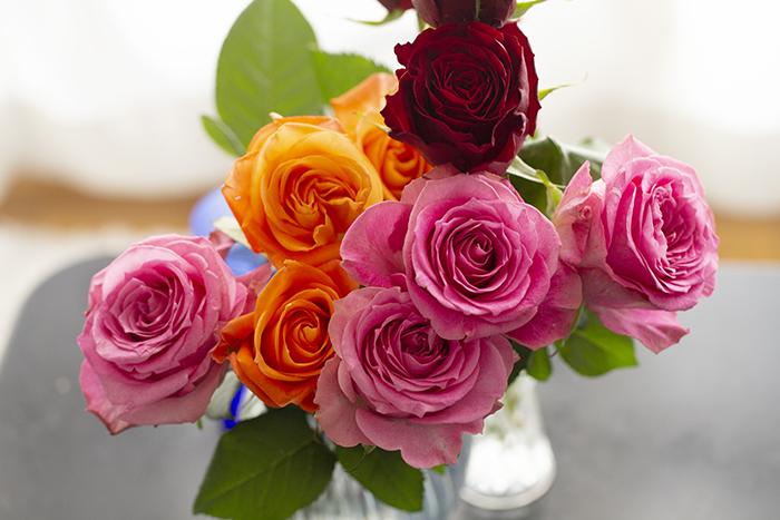 _2574_rose.jpg