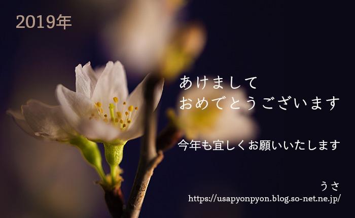 _blog_9314.jpg