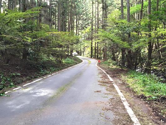 b_400_road.jpg