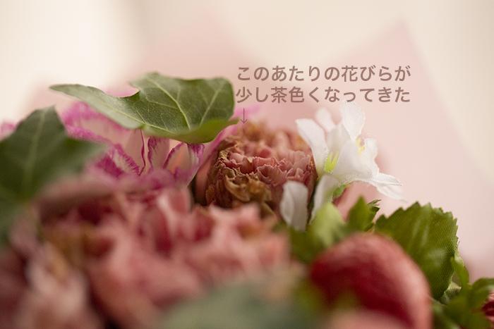 br_2378.jpg