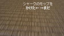 20389畳に使用.jpg