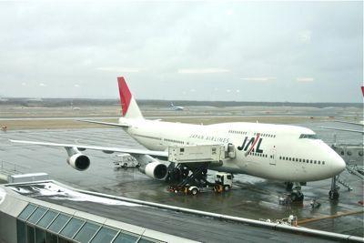 JAL1S.jpg