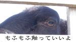 R0021219目のコピー.jpg