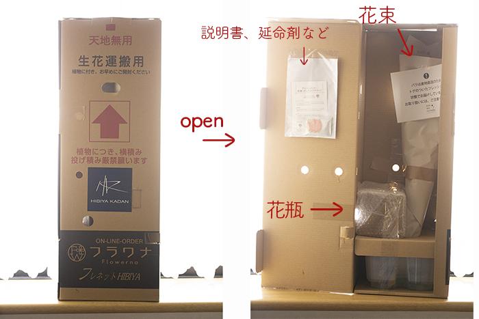 open_3275.jpg