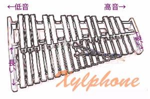 xylphone.jpg